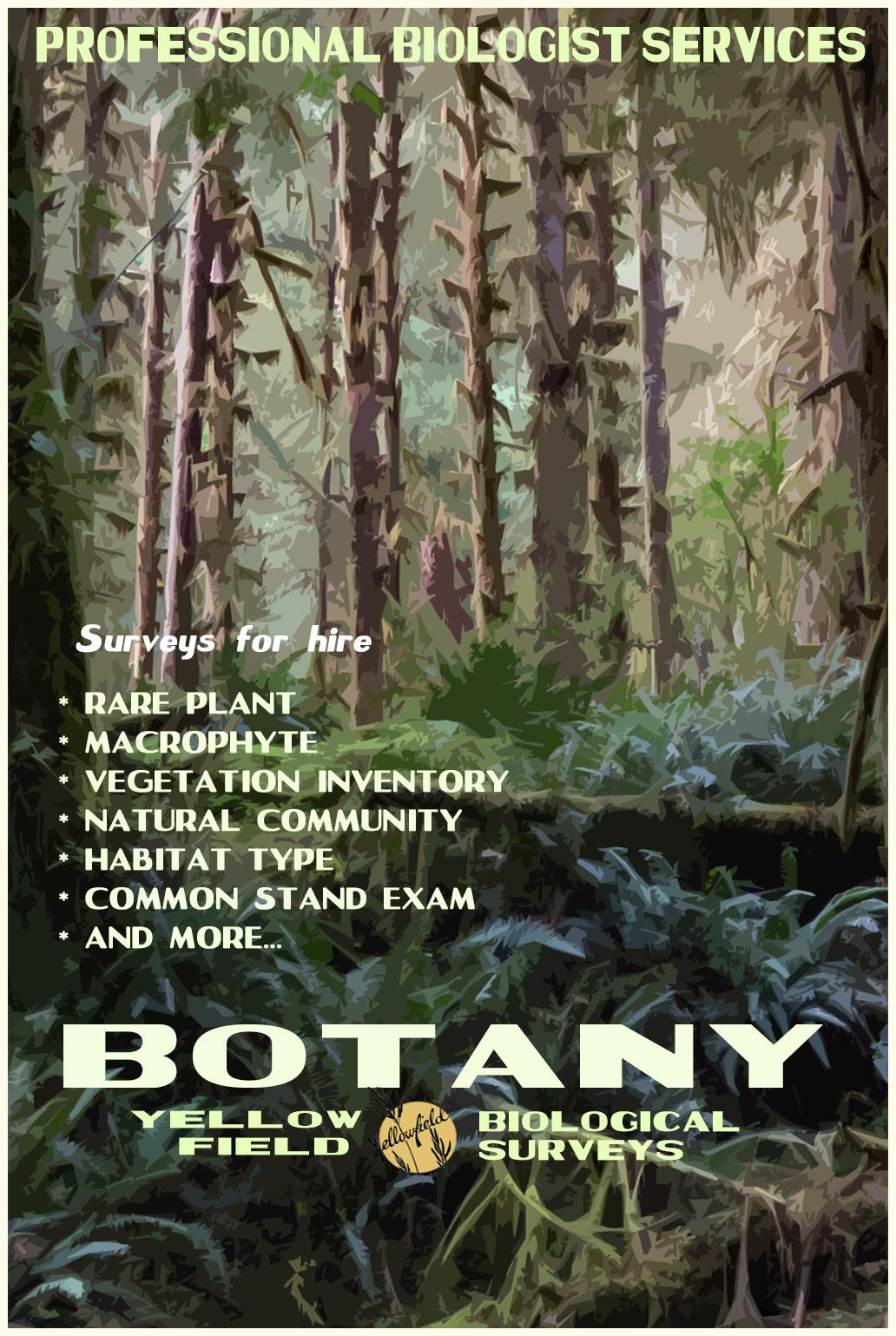 Botany Surveys